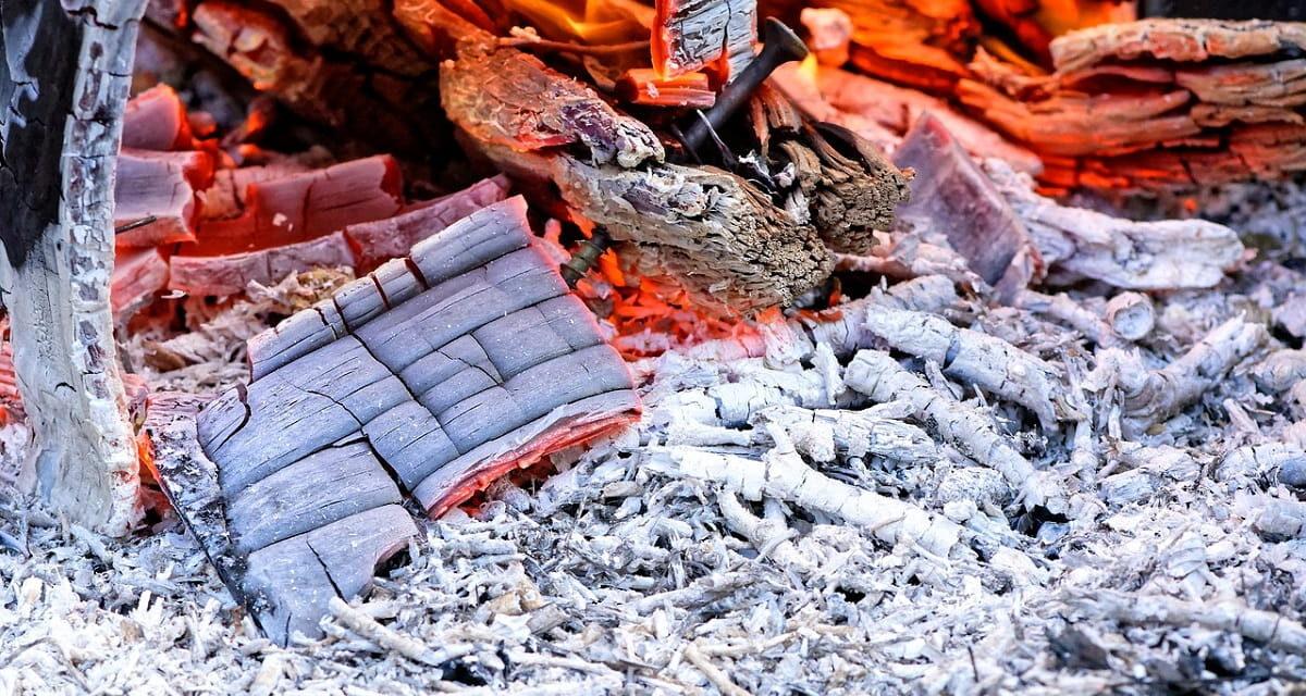 Cenere di legno: come puoi usarla e soluzioni